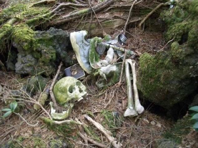 Hutan Bunuh Diri Misterius di Jepangw