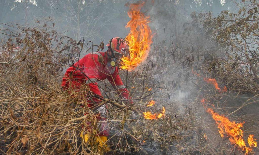 Kebakaran Hutan Di Indonesia1