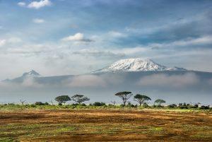 Bayangan Penjajahan Kolonial Masih Mengancam Sabana Dan Padang Rumput